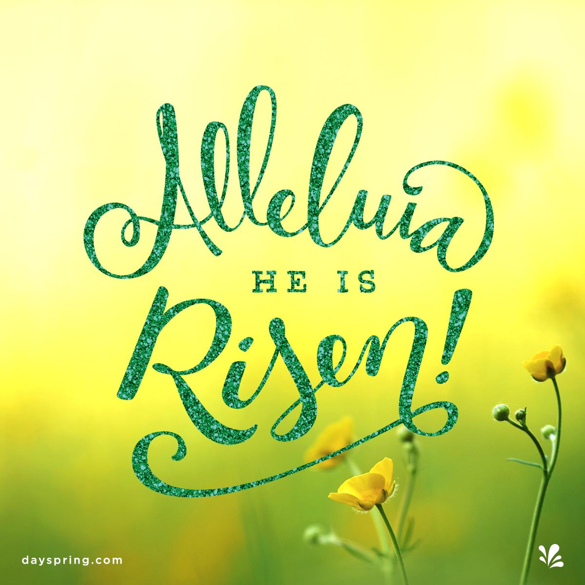 Alleluia He is Risen. Easter